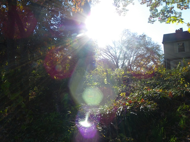 sun flare (2)
