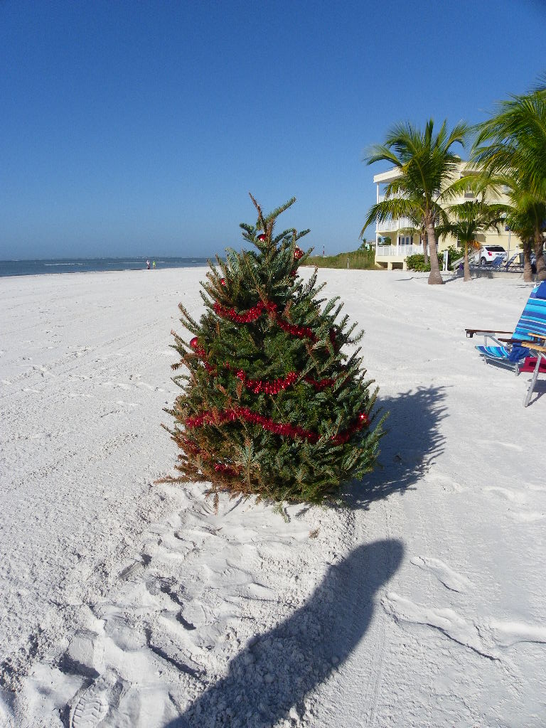 Christmas on the beach. Perfect