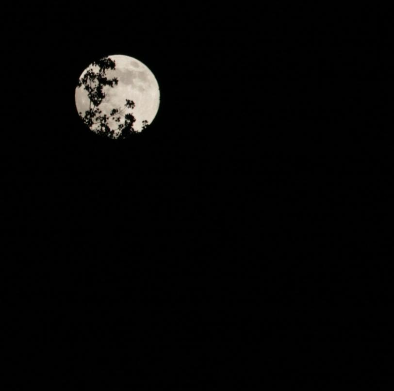 June Super Moon