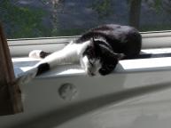 May sunbathing