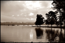 Concord Park, Knoxville - Sunrise Sepia