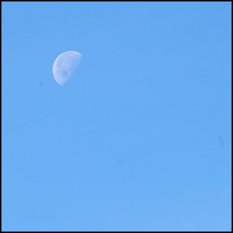 Unexpected moon at 10:30 in the morning.