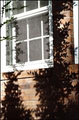 window sm