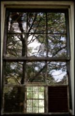 windowtree border sm
