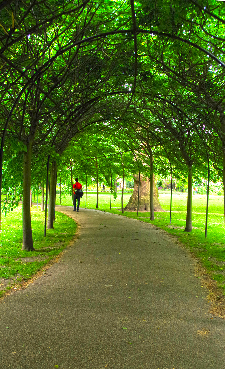 Walking through an arbor in London.