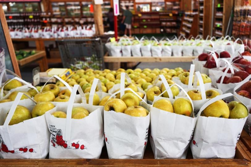 apple bags 0061 sm