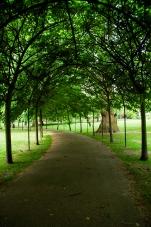 park color-0682 sm