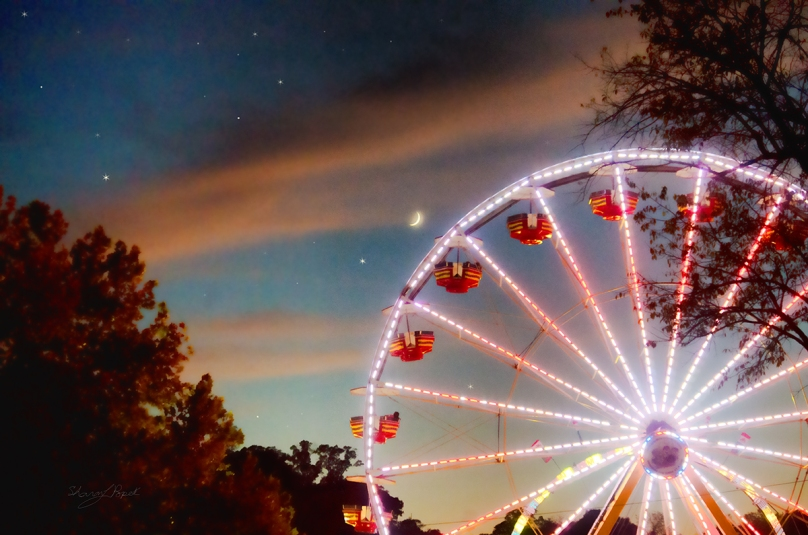 The circle of a ferris wheel at dusk.